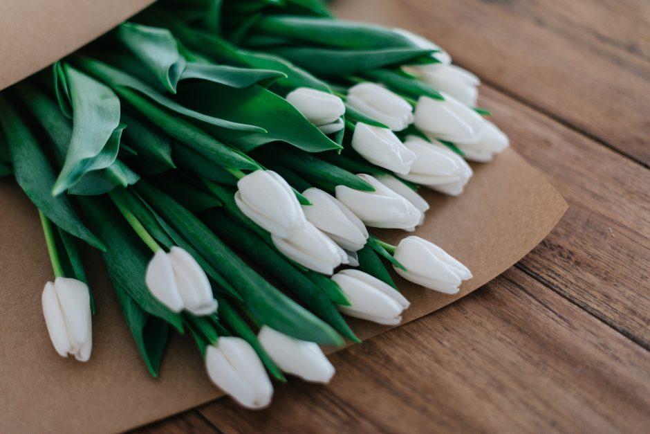 Bukiet białych tulipanów