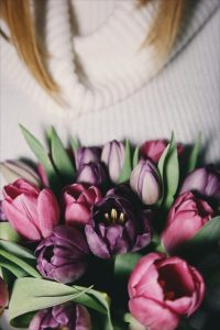 tulipany, bukiet fioletowy, ultra violet, panton 2018